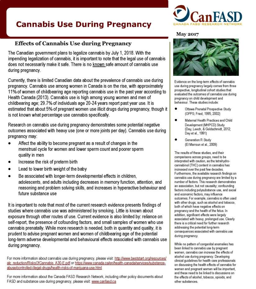 Cannabis-Use-and-Pregnancy-Policy-Alert.jpg
